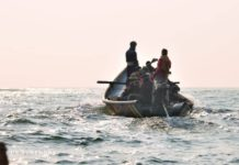 Going for Olive Ridley turtles