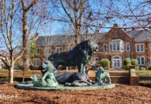Lion is the mascot of University of North Alabama