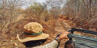 Tiger tales - Rantambhore tiger reserve
