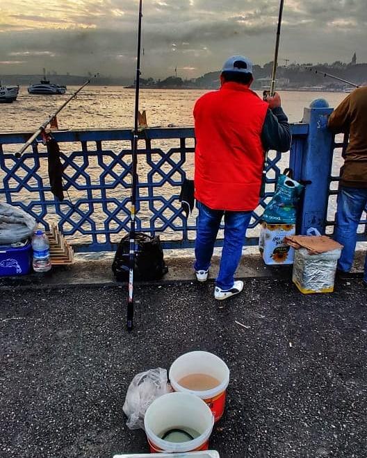 Morning catch at Galata bridge