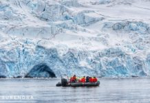 Antarctica holds 80%
