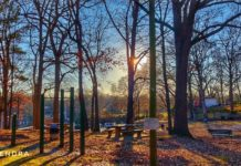 Evening at the park - Florence Alabama USA