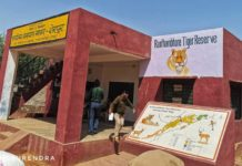 The hunting ground for royals of Rajasthan