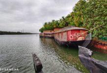 Houseboats at Ashtamudi lake