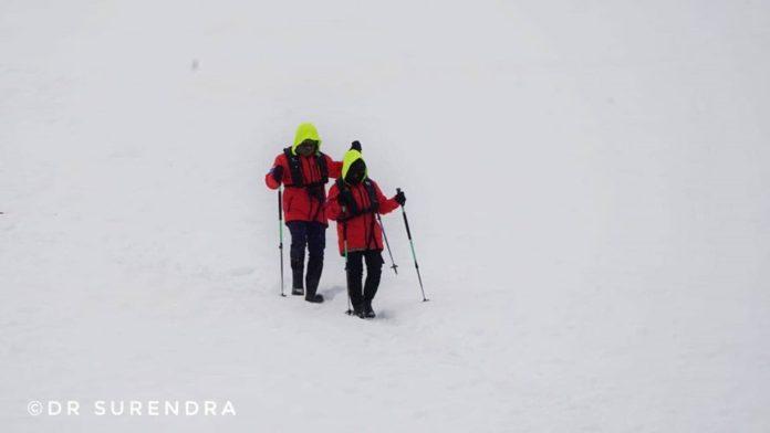 Antarctica - No plants
