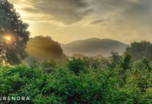*My Picture of the day* - Morning glow at the forest trail near Vijayawada. ****** Dr.Surendra www.instagram.com/dr.surendra.2017