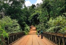 *My Picture of the day* - Looks good, works good - the temperary Baily bridge built by the British is still in use in the remote forest area of Maredumalli, Andhra Pradesh. ****** Dr.Surendra www.instagram.com/dr.surendra.2017