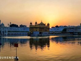 Golden temple in golden glow - Amritsar Punjab.