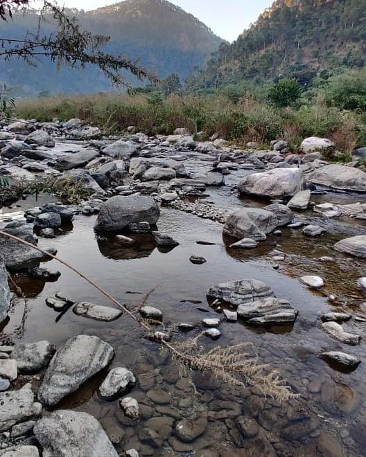 Nature walk along Gaula river