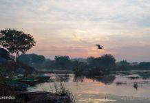 Ameenpur lake -