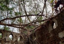 The ruins of British rule on Ross island, Andamans.