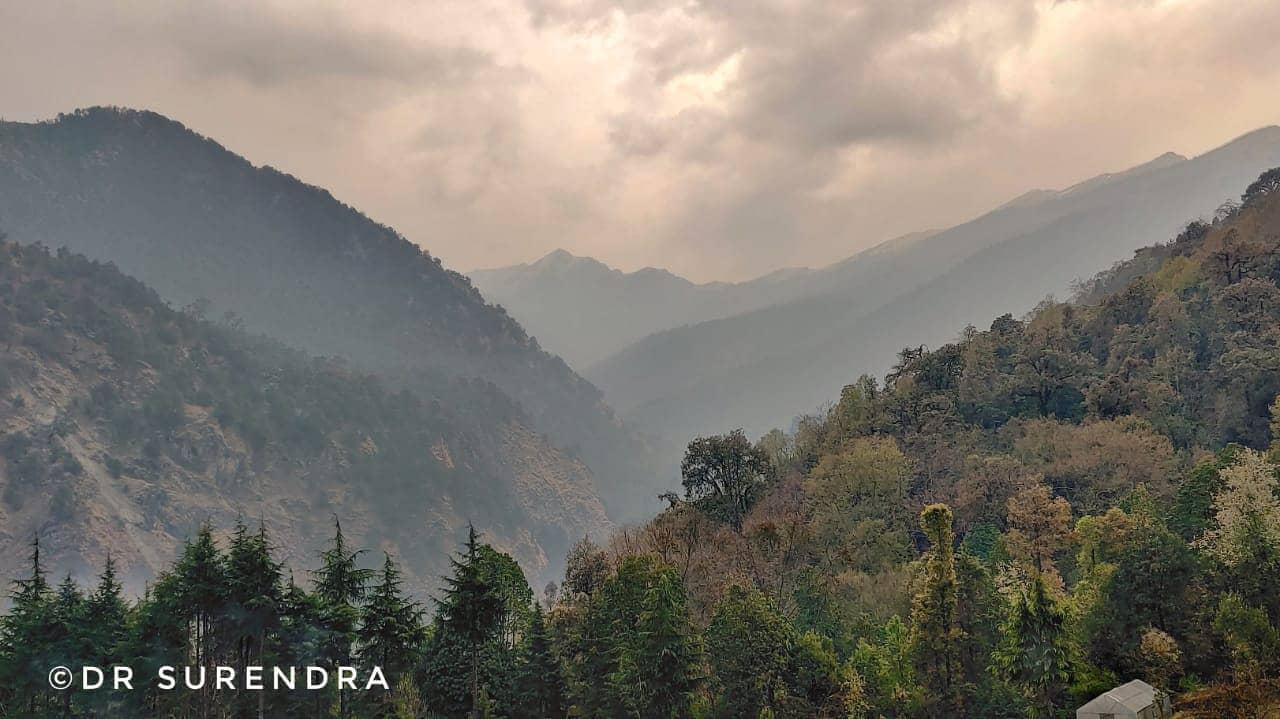 A cloudy evening at Chopta uttarakhand.