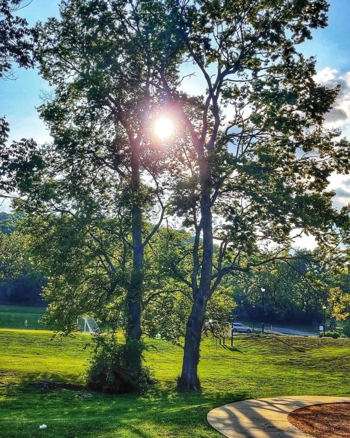 *My Picture of the day* Evening scene at Brentwood park, Tennessee, US. ***** *Dr.Surendra* — in Brentwood, Tennessee