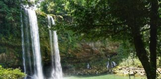 *My Picture of the day* The Cascada de Misol-Há - the waterfall near Palenque in the state of Chiapas, Mexico. ***** *Dr.Surendra* — at Cascada Misol-Ha